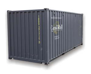 20 Foot New Container
